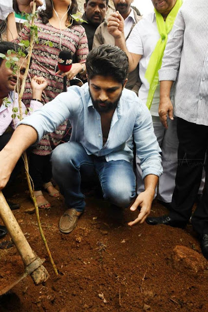Allu arjun in Haritha Haram programme today