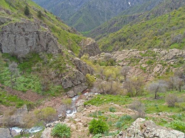 Весенний поход к водопадам в Гусгарфе, Варзобское ущелье, горы Таджикистана - фото-обзор похода