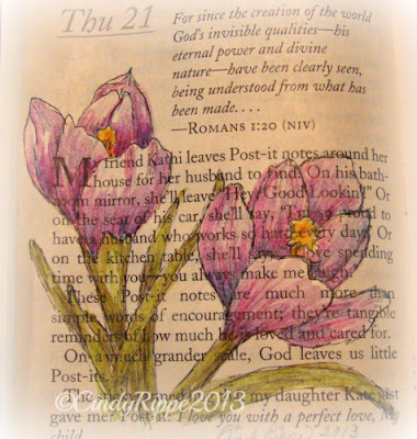 Crocus, Daily Sketch, Drawing of Crocus Flowers, Pen and Ink, Inktense pencils, Romans 1:20 Bible verse, devotion page from 2013 Daily Guidepost book, Florals, Family, Faith, Cindy Rippe