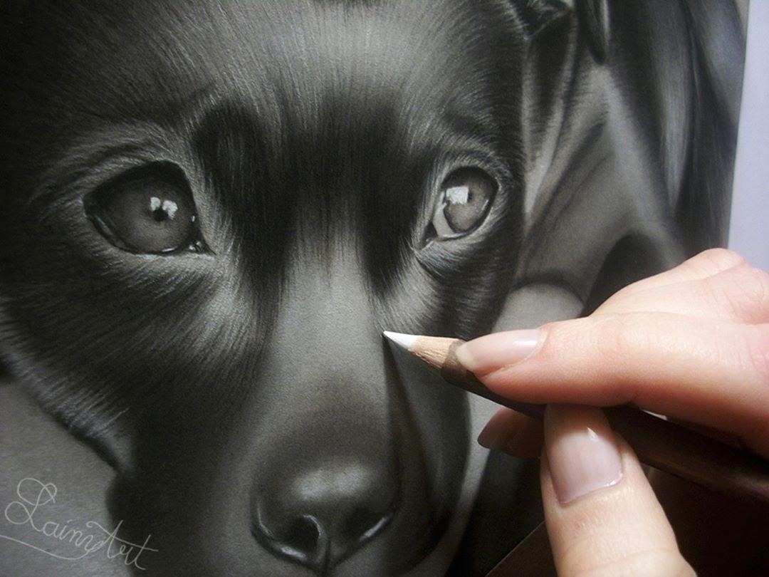 04-Puppie-Detail-Alaina-Ferguson-Animal-Portraits-Cats-Dogs-and-a-Guinea-Pig