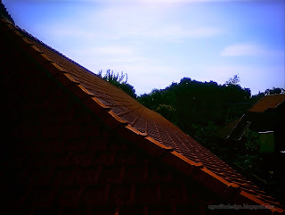 Perspective View Roof Tiles Of The House At Sulanyah Village, Seririt, North Bali, Indonesia