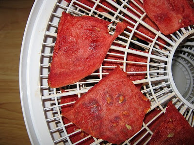 dried watermelon slices in food dehydrator