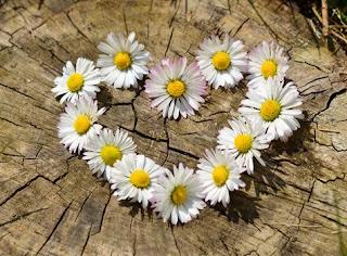 Random Acts of Love | Divine Healing Hands