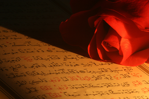 Kuran'a Dokunmak veya Okumak İçin Abdest Şart mıdır ?