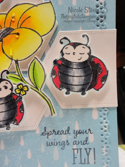 Stampin' Up!'s Sale-A-Bration set Little Ladybug encouragement/graduation card using Splitcoaststampers Card Sketch 794 | Nicole Steele the Joyful Stamper