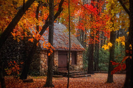 Gafunkyfarmhouse This N That Thursdays Cozy Autumn Images