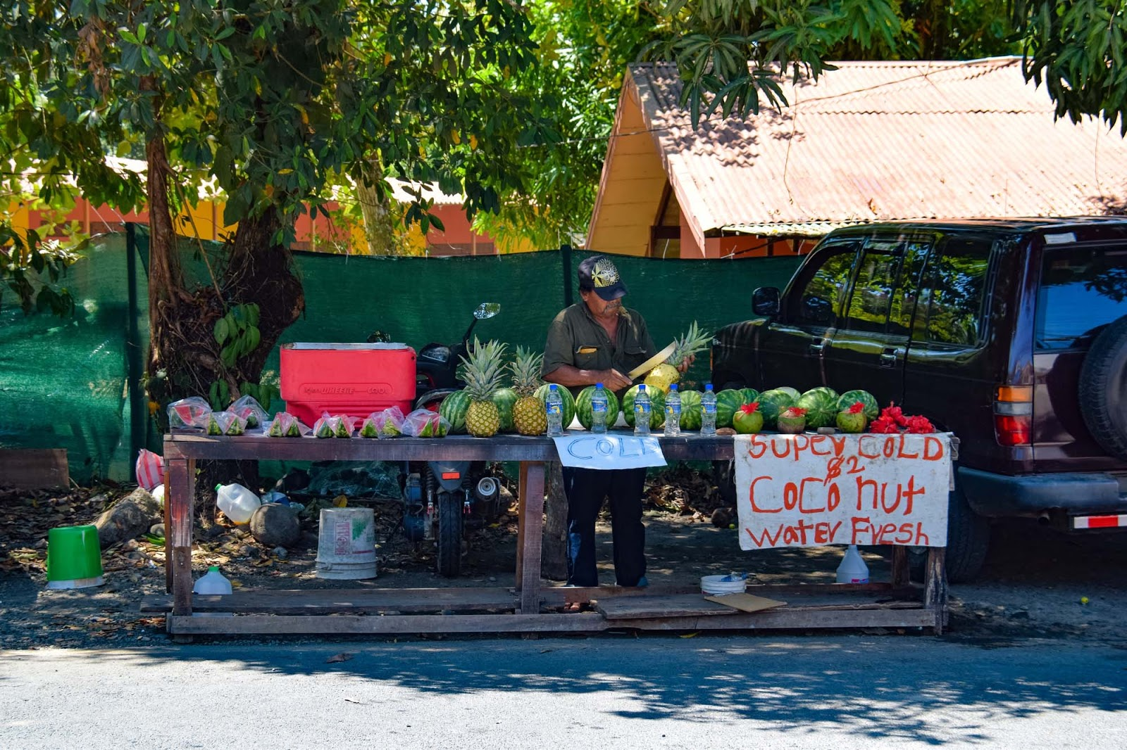 fruit stand in costa rica