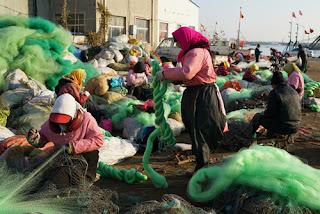 Η Κίνα ψαρεύει 4 εκατομμύρια ψάρια τον χρόνο τα οποία δεν καταναλώνονται...