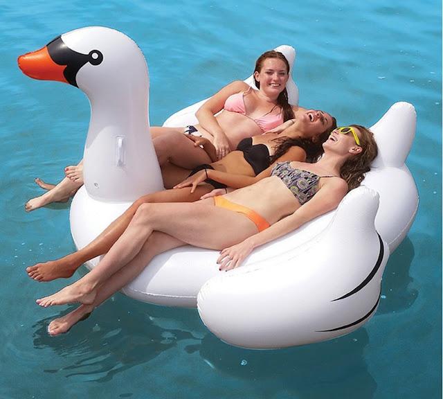 flotador cisne