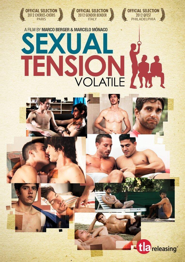 Tensión Sexual Volúmen 1: Volátil