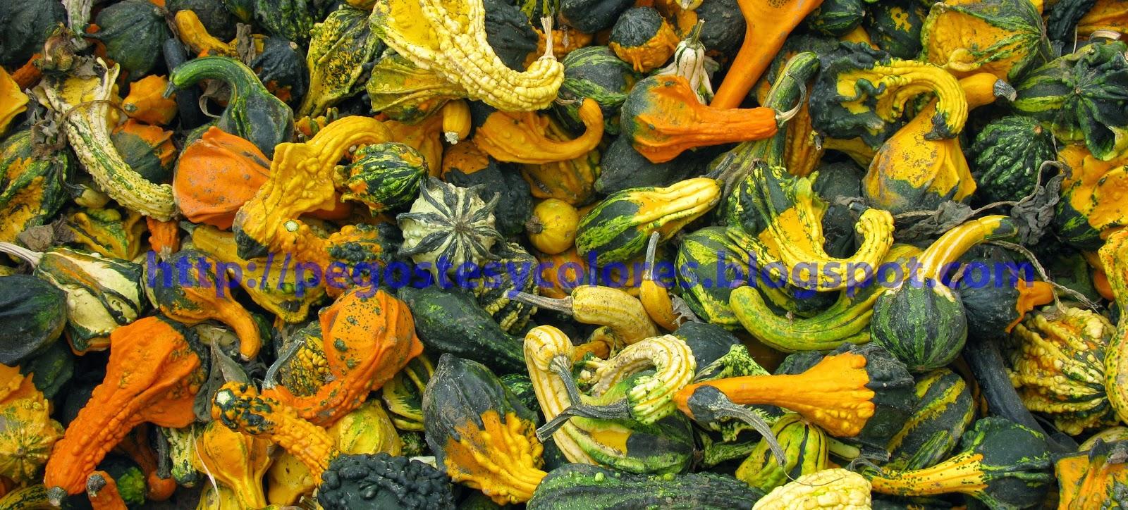 Pegostes y Colores: octubre 2014