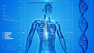 Exercícios sobre Sobre o Sistema Sanguíneo ABO 8º ano