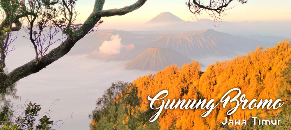 Open Trip Bromo Midnight Paket Wisata Gunung Bromo Setiap Hari
