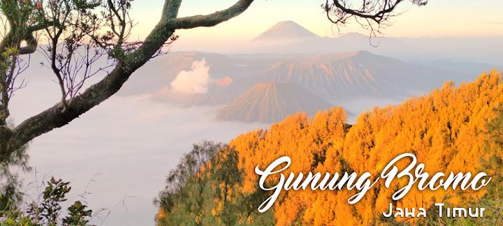 paket open trip bromo mengunjungi obyek wisata terbaik di kawasan gunung bromo