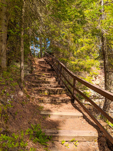Thimbleberry Trail at Amnicon Falls State Park