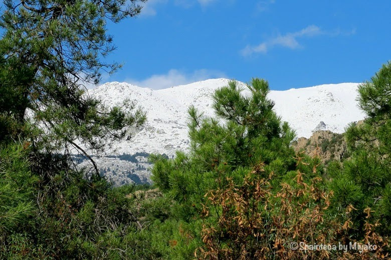 La Pedriza マドリードでハイキングしながら眺める雪山