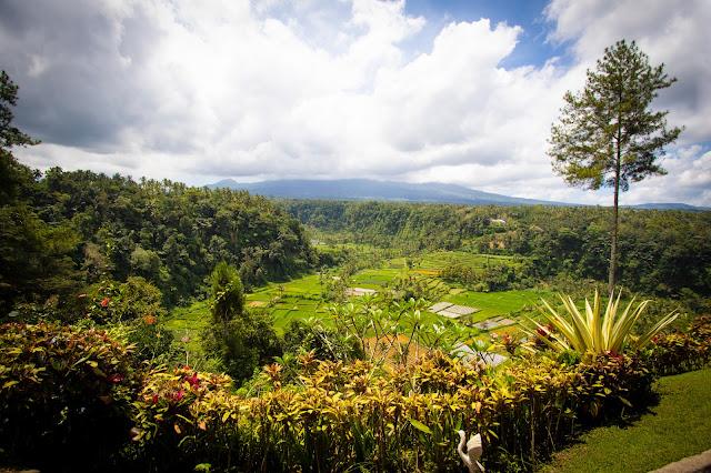 Vulcano Agung e risaie-Bali