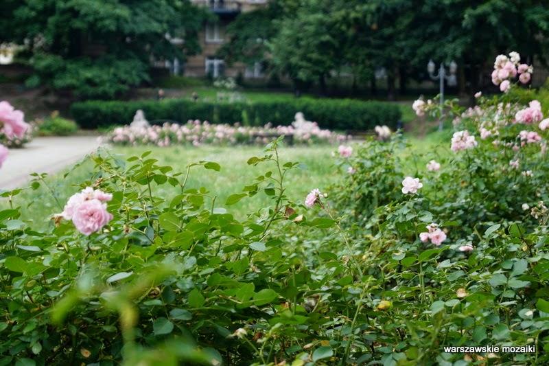 park ogród Chopina Aleja Róż fontanna rzeźba