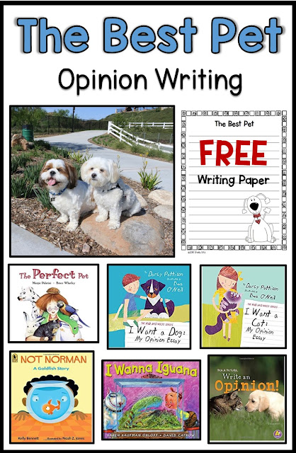 Opinion Writing:  The Best Pet