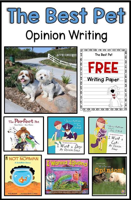 Opinion-writing-second-grade