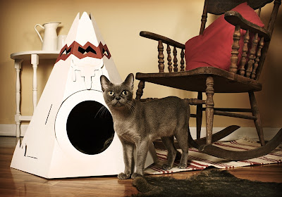 Creative Cat Houses and Cool Cat Bed Designs (21) 1