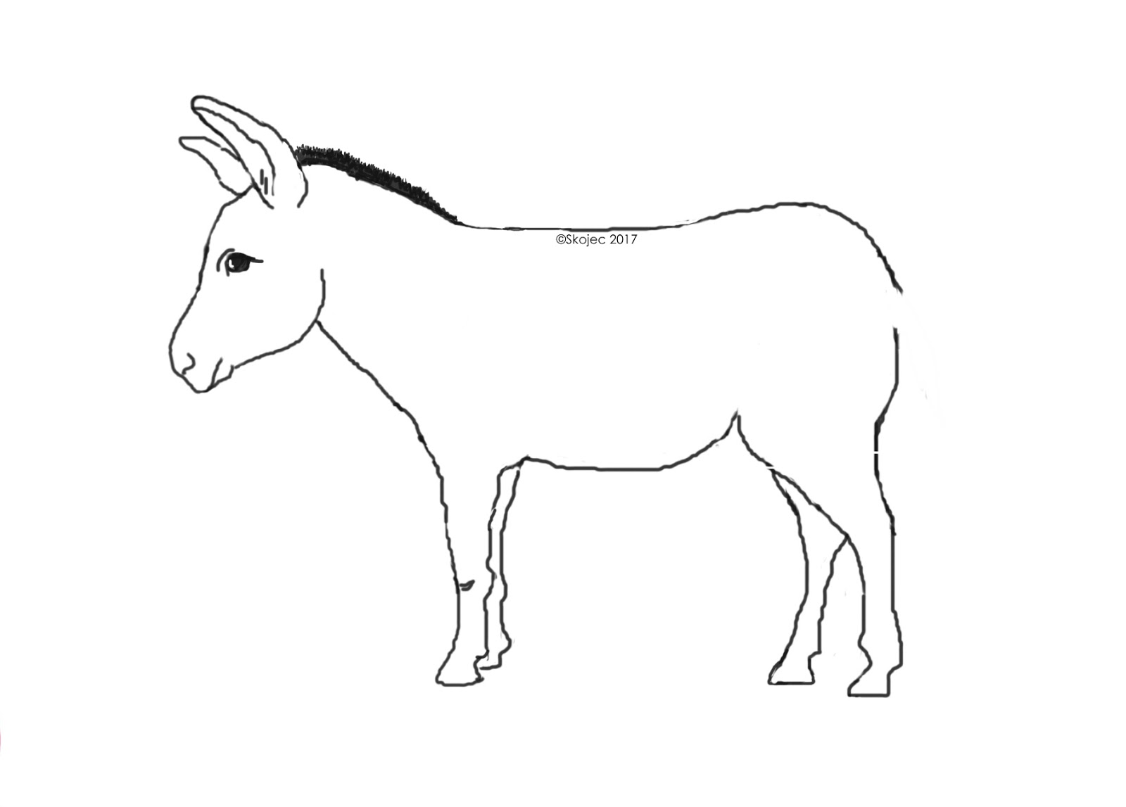 рисунки животных без хвоста для конкурса полностью