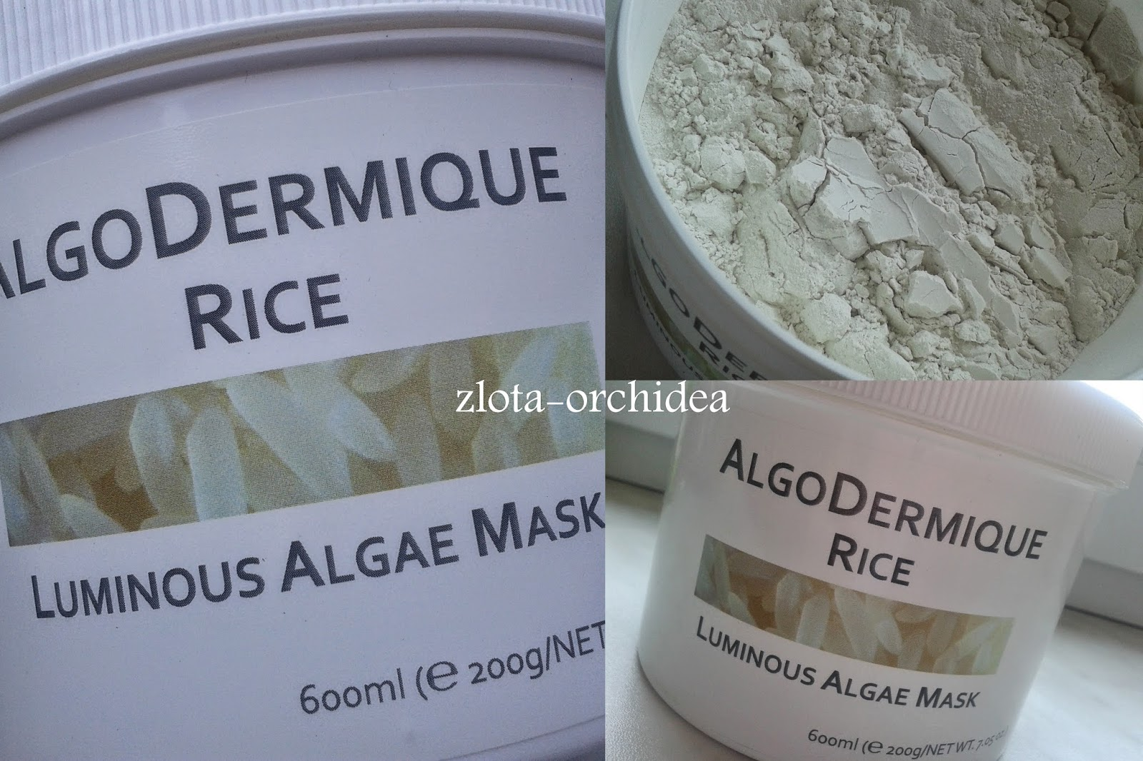 THEO MARVEE algo dermique rice