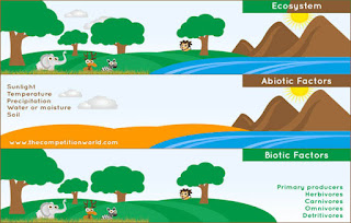 biotic and abiotic parts of an ecosystem
