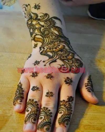 New Beautiful Pakistani And Indian Mehndi Designs
