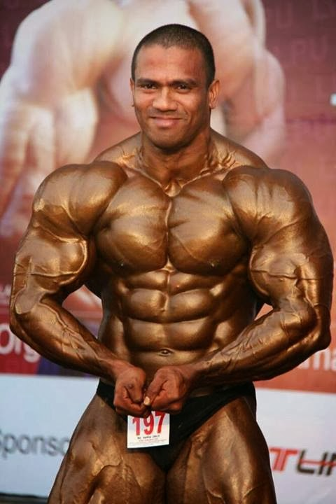 olympia gold steroids