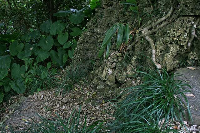 ウフイービ左側面の石積みの写真