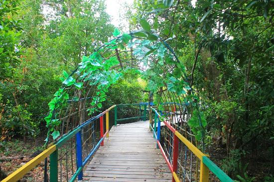Pemandangan Mangrove Park bakau Besar 3 - Catatan Nizwar ID