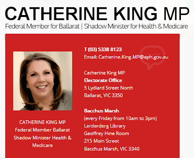 Catherine King, Labor shadow minister for health