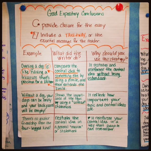 Good conclusions for expository essays for 6th