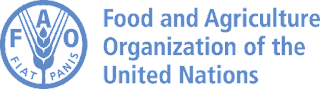FAO Indonesia Vacancy - National Communications Officer