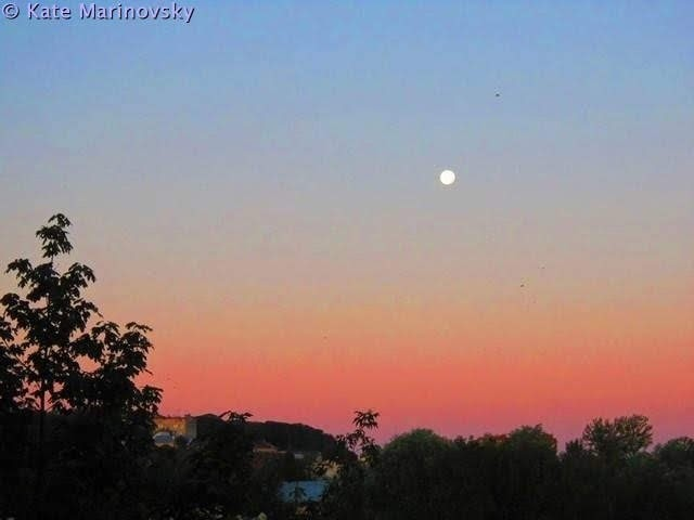 Rosy morning and lonely moon
