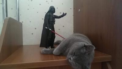 Дард Вейдер и кот