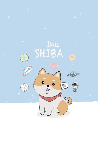 Shiba 2