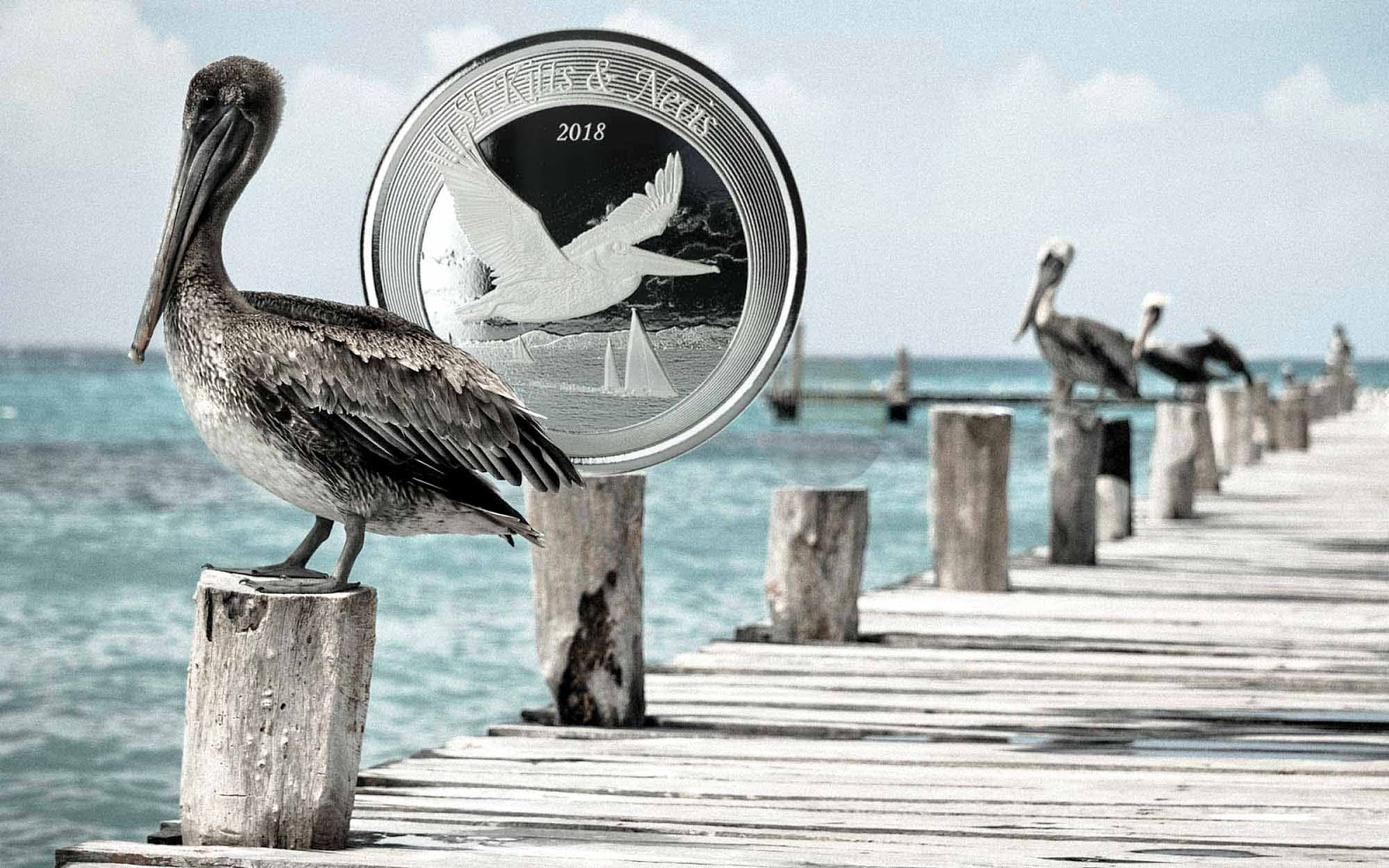 KITTS /& NEVIS 2018 BROWN PELICAN 1 OZ .999 SILVER  COIN ST