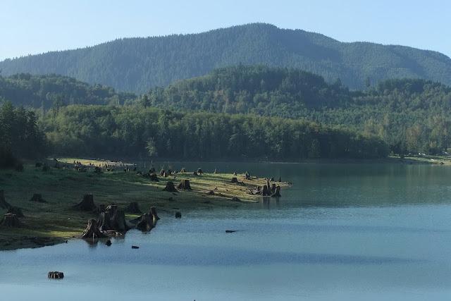 alder_lake