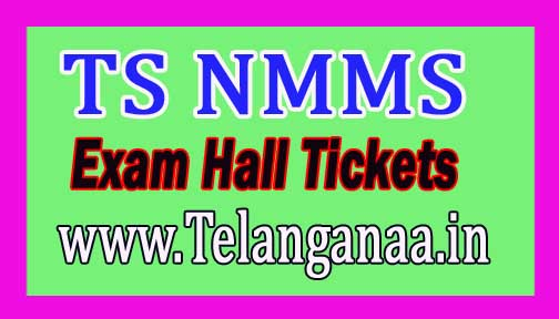 Telangana TS NMMS Hall Tickets 2016 Download