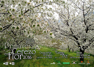 Cerezo en Flor 2016. Valle del Jerte