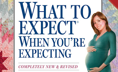What to Expect When You're Expecting Filme