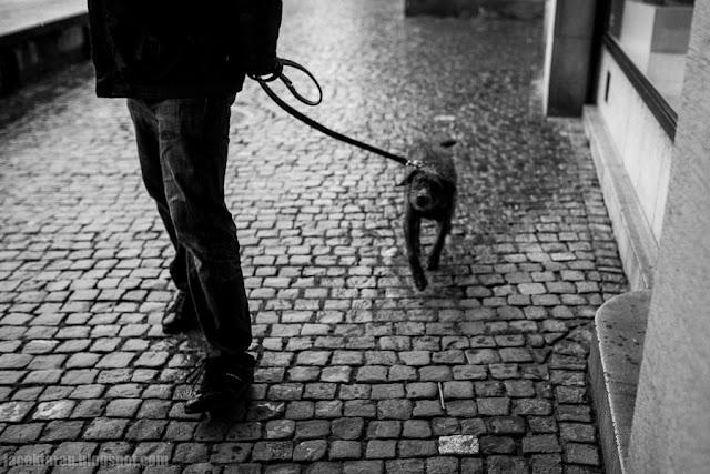 zurich, street photo, szwajcaria, jacek taran, swiss, switzerland