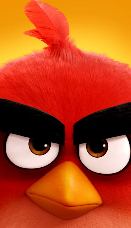 angry bird movie download hd