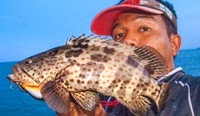 Grouper Fishing in Thailand