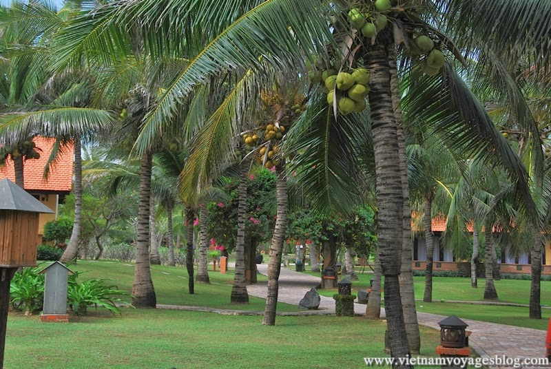 Pandanus Resort Muine - Photo An Bui