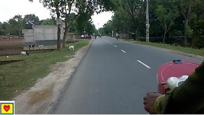 Ekti Monushyotyer Golpo একটি মনুষ্যত্বের গল্প_Short Film Stories কাহিনী সংক্ষেপঃ   কামরুল হাসান একজন চিত্রশিল্পী ।   সকালে তার ফ্ল্যাটের বারান্দায় চিত্র অঙ্কন করার সময় তিনি একটি মেয়েকে ছাতা মাথায় রাস্তাতে দাঁড়িয়ে থাকতে দেখলেন। প্রচন্ড ঝড়-বৃষ্টি সে সময়।বাইরে নির্জন। যানবাহন চলাচল ও বন্ধ।  কামরুল হাসান নিচে নেমে তার সাথে আলাপ করে জানতে পারলেন তার দাদী অজ্ঞান। তিনি দেরি না করে সাবিনার দাদীকে হাসপাতালে নিয়ে যাওয়ার সিদ্ধান্ত নেন। শীতের সকাল। সূর্যের আলো পড়েনা। চারিদিক কিছুটা অন্ধকার দেখাচ্ছে। সাবিনার দাদীকে গাড়িতে তুলে তিনি হাসপাতালে নিয়ে যাচ্ছেন। পথে কিছুটা দুর্ভোগ হলেও অনেক কষ্টে হাসপাতালে পৌঁছেন। পরে সাবনার মা গার্মেন্টস এর কাজ ছেড়ে হাসপাতালে ছুটে আসেন। সাবিনার দাদী সুস্থ হয়ে উঠেন।                                                                   চরিত্র লিপি     কামরুল হাসান ( কামরুল) [ বয়স ৩৫ বছর। ভদ্র, মার্জিত । চিত্রশিল্পী। মানবহিতৈষী। মধ্যবিত্ত। গল্পের প্রধান চরিত্র। ]     সাবিনা [ বয়স ৫ বছর। চঞ্চল প্রকৃতির। বেগম রোকেয়ার একমাত্র মেয়ে। ]     বেগম রোকেয়া [ বয়স ৩০ বছর। সাবিনার মা। গারমেন্টস এ চাকরি করেন। নিম্ন-মধ্যবিত্ত। ]     নুরুন নাহার বেগম [ ৬৫/৭০ বছর। সাবিনার দাদী।     ডাক্তার [ ১ জন ডাক্তার]     নার্স [ ২ জন নার্স।                                                                                                                                      চিত্রনাট্য   দৃশ্য-১ । কামরুল হাসানের বাড়ির বারান্দা।শীতকাল।ঝড়-বৃষ্টি। সকাল ১০টা   কামরুল হাসান বাড়ির বারান্দায় বসে চিত্র আঁকছেন। কিন্তু প্রচন্ড ঝড়-বৃষ্টির কারণে চিত্র আঁকা বন্ধ করে দিলেন। পাশের ফ্ল্যাটের বারান্দায় একটি মেয়েকে দেখতে পেলেন। মেয়েটি মুহূর্তে বাড়ির ভিতরে ঢুকে পড়ল।রাস্তায় যানবাহন চলাচল বন্ধ রয়েছে। লোকজন ও দেখা যায় না।নির্জন। কিছুক্ষণ পর তিনি দেখলেন, মেয়েটি  রাস্তার পাশে একটি ছাতা নিয়ে দাঁড়িয়ে আছে। কামরুল একটি ছাতা নিলেন।ঘরের দরজা খুললেন।     দৃশ্য-২ । কামরুলের বাড়ির সিঁড়ি/নিচ তলা ।   ২য় তলা থেকে কামরুল সিঁড়ি বেয়ে ছাতাটি হাতে নিয়ে নিচে নেমে পড়লেন। বৃষ্টি আর খুব জোরে বাতাস বইতে আছে। মেইন গেট খুলেই কামরুল দেখলেন রাস্তায় পানি জমে আছে। কামরুলের বাড়ির বাইরে সামনে একটি