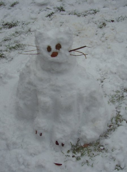 buttons-snow-cat-winter