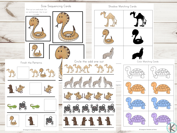 Desert-Animals-Printables-Activities